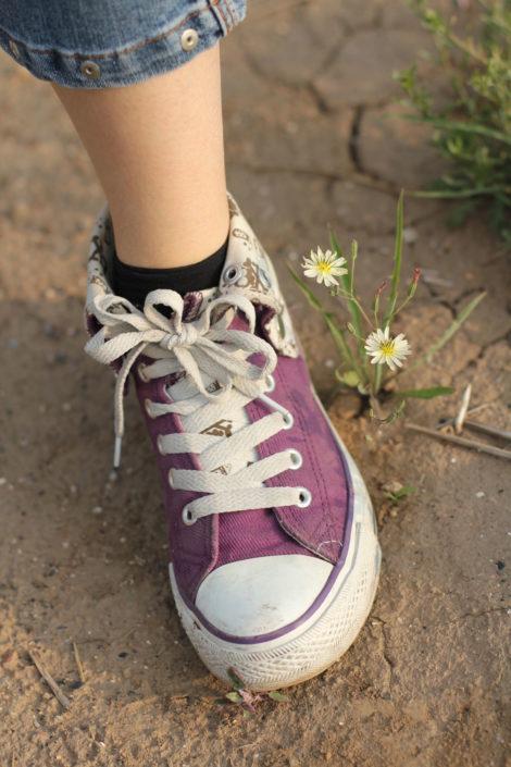 chaussure-mauve-purple-day